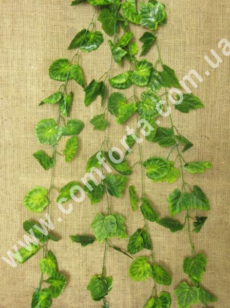 Цветов зелень букеты лианы 101 роз аква